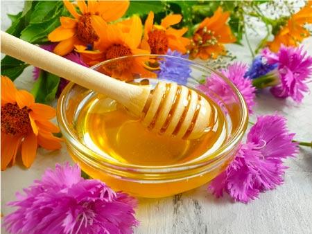 honey home remedy for uti