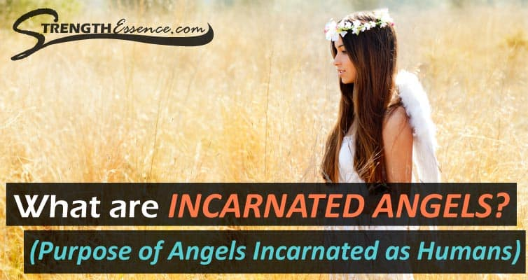 incarnated angels purpose